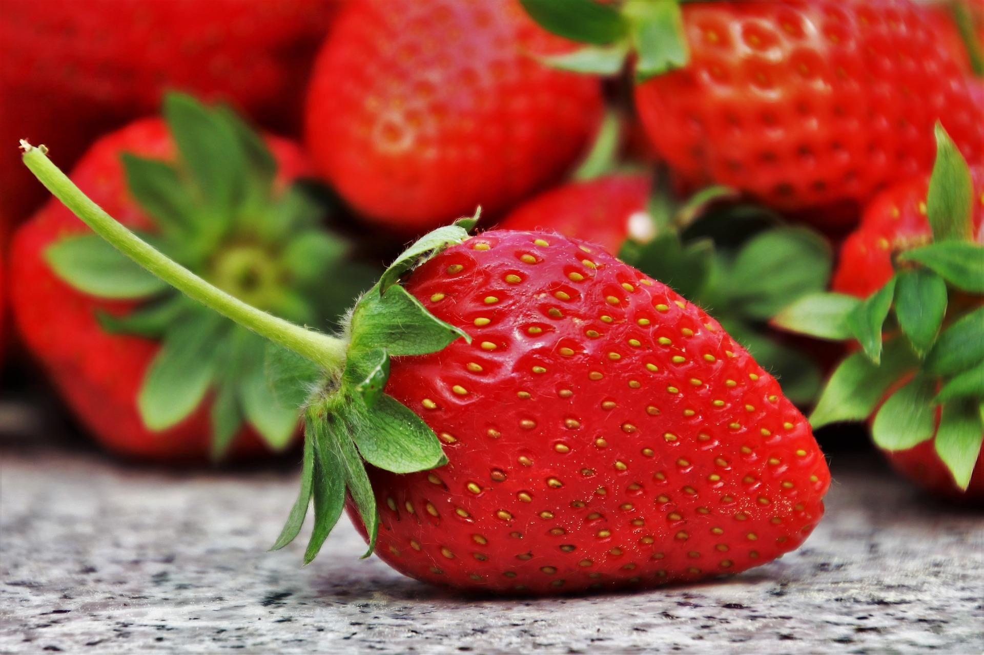 Pěstování sladkých jahod – jde to i v domácích podmínkách? 4